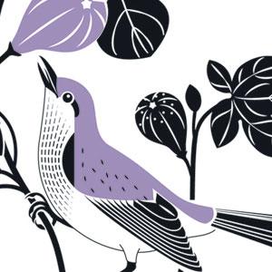 Hommage à Jean-Jacques Audubon